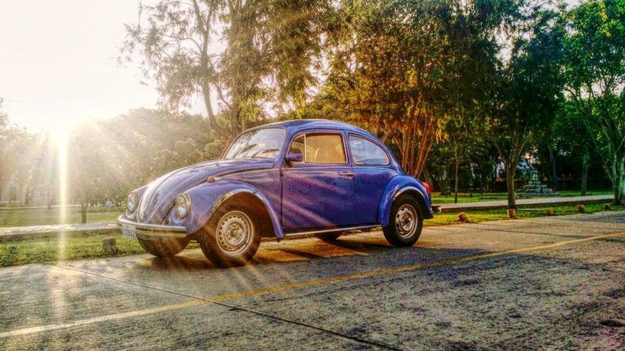 Exceptional Photographs EyeEm Best Shots Photoshoot Blue Car Bokeh Car Day Eye4photography  No People Oldie  Outdoors Sunny Day Transportation Tree Vintage Vintage Cars Volkswagen