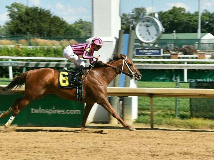 Kentucky  Jocky Churchill Downs Horse Races