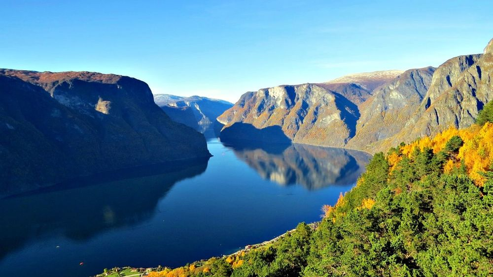 Aurland Aurlandsfjord Autumn🍁🍁🍁 Beauty In Nature Birch Trees Birch Wood Day Fall Beauty Fall Colors Fall_collection Landscape Nature Outdoors Scenics Western Norway Yellow Yellow Flowers