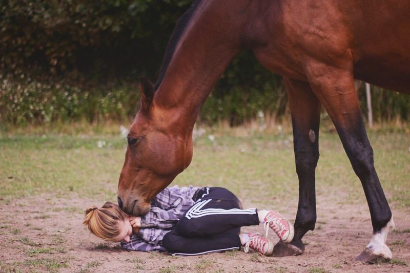 Horse with young woman lying on field
