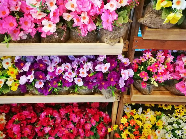 plastic flowers Plastic Flower Florist Flower Head Flower Flower Market Multi Colored Flower Shop Plant Nursery Shelf Choice Retail  Shelves Stall