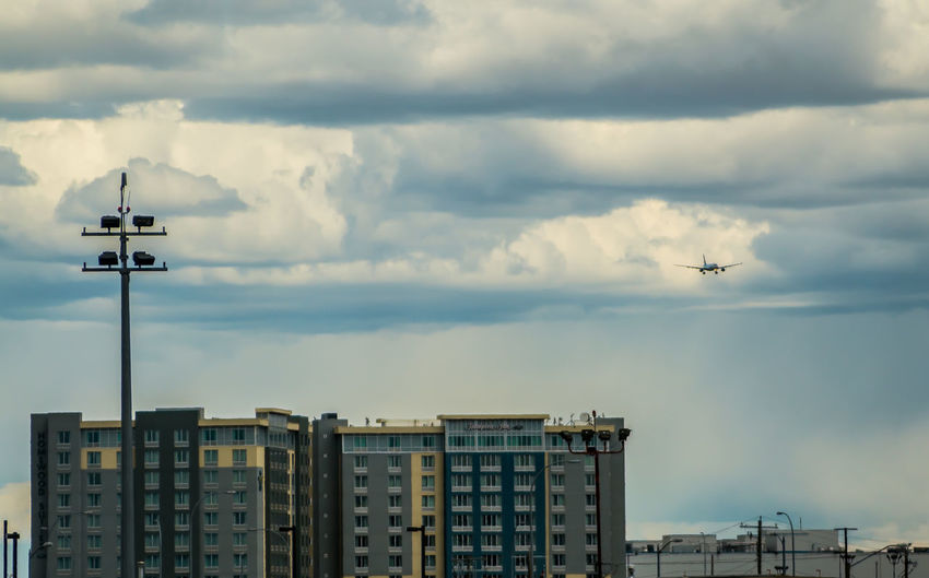 Bird flying over city against sky