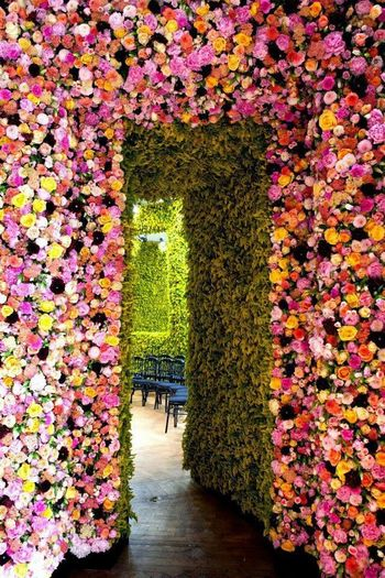 Amazing Places To See Beautiful Nature Best View Flowerporn Flowers,Plants & Garden Walldecoration