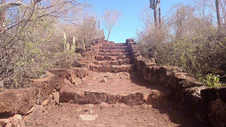 Path to Las Grietas Sunny Galapagos Shadow Sunlight Day Outdoors Tree Nature No People Sky