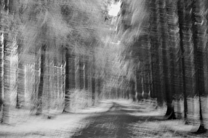 Blackandwhite Photography Monochrome Getting Inspired Drunken Hugging A Tree