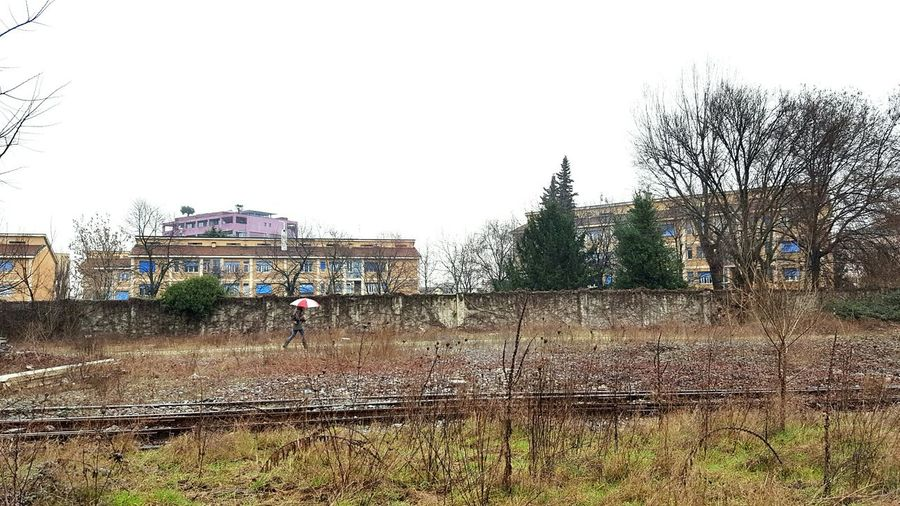 Outdoors Day Tree Adult Woman Abandoned Places Railroad Track Railroad City Cityscape City View  Rainy Day Umbrella