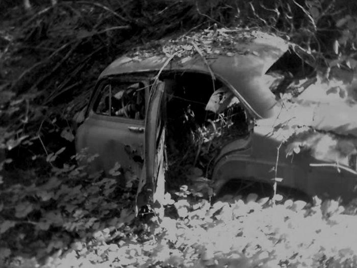 Forest Abandonned Car