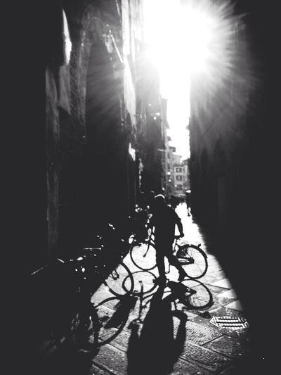 Lucca Light ~ Italy 2014 Traveling Architecture Italy Street Photography
