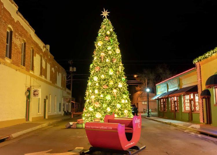 Illuminated christmas tree by building at night