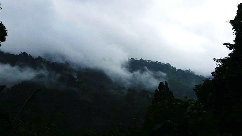 Nature On Your Doorstep Malaysia Mountain Fog White Green Malaysia