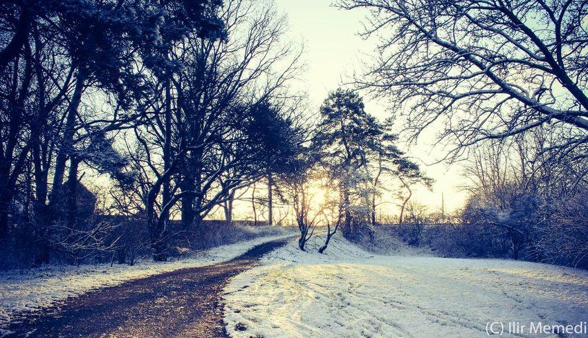 Winter In Denmark Snow Denmark Eye4photography  EyeEm Best Shots Copenhagen Frederiksberg
