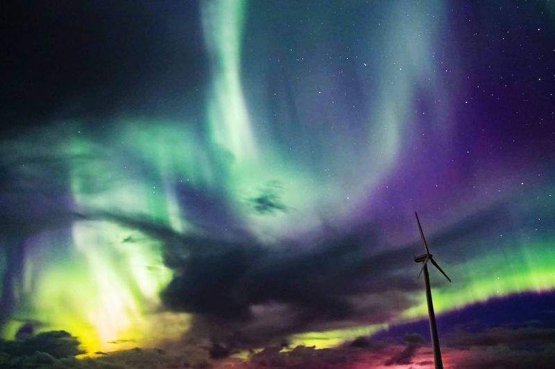 Northern Lights A New Beginning Astronomy Space Star - Space Illuminated Tree Aurora Polaris Power In Nature Multi Colored Natural Phenomenon Winter Constellation Nebula Infinity Lightning Sky Only Space And Astronomy Meteorology Galaxy