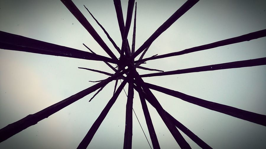 Look up! Wintertime Outdoors Tipi Day Logs