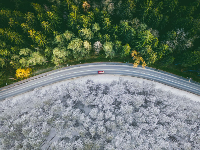 Aerial View Of Road Amidst Trees During Winter
