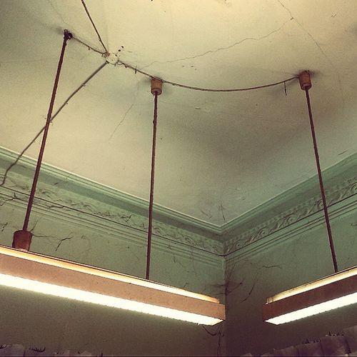 """Old ceiling in Schanze. """"Arm"""" aber sexy. Schanze Schanzenviertel Blumenladen The Traveler - 2015 EyeEm Awards"""