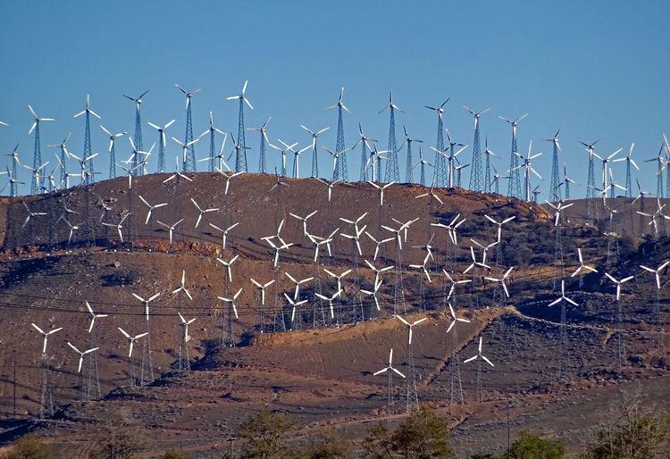 California Day Energie Energy Kalifornien No People Outdoors USA USA Photos Wind Turbines Wind Turbines Field Beautifully Organized New Talents