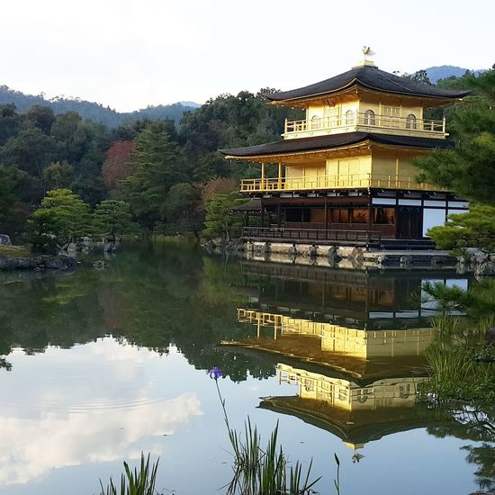 Reflection Water Lake Architecture Built Structure Outdoors Building Exterior Floating On Water No People Day Tree Nature Sky Golden Pavilion Temple Kyoto, Japan Travel Destinations Spirituality