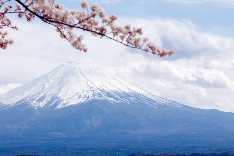 Mt.Fuji with