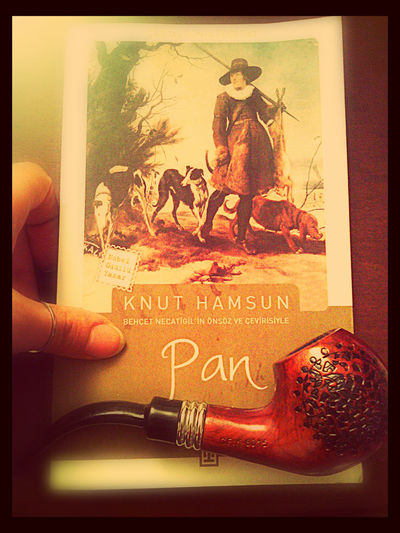 Books Knut Hamsun Pan
