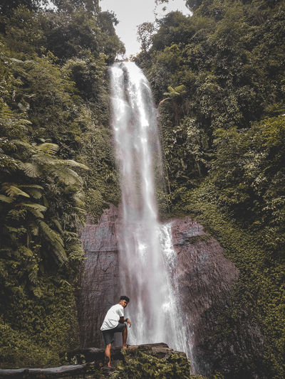 Rear view of man standing by waterfall in forest