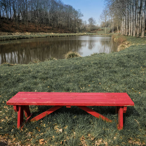 Empty bench by lake in park