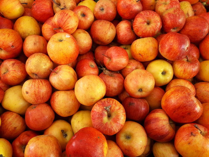 apples at the