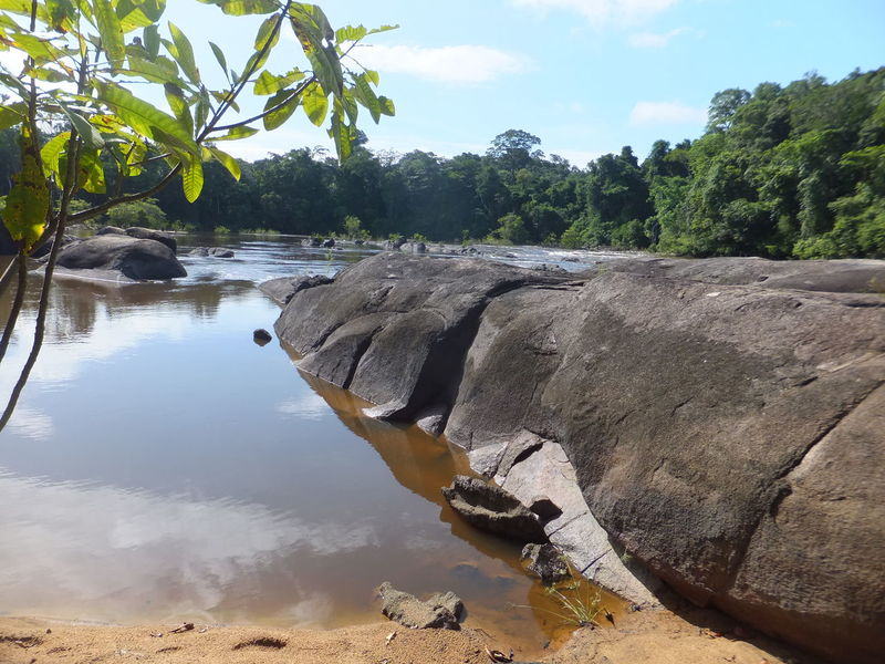 Beautiful nature scene at Raleighvallen Beautiful Landscape Beautiful Nature Beautiful River Beautiful Scenery Beauty In Nature EyeEmNewHere Nature Nature Reserve No People Outdoors Rain Forest Rainforest Relaxing River Rock - Object Rocks Rocks And Water Scenery Scenics Sky South America Suriname Tree Trees Water