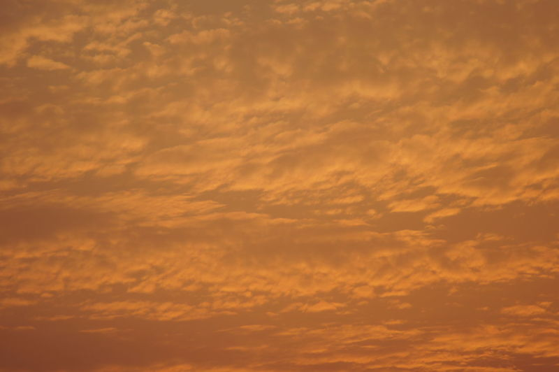 An interesting sky. Sky Cloud - Sky Orange Color Nature Beauty In Nature Scenics - Nature Tranquility Tranquil Scene Backgrounds Idyllic Yellow Dramatic Sky Cloudscape Meteorology Non-urban Scene Full Frame No People Day Outdoors Low Angle View Romantic Sky Atmospheric Mood Sunset