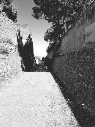 Outdoors Day No People Rome Travel Destinations City Moving Around Rome