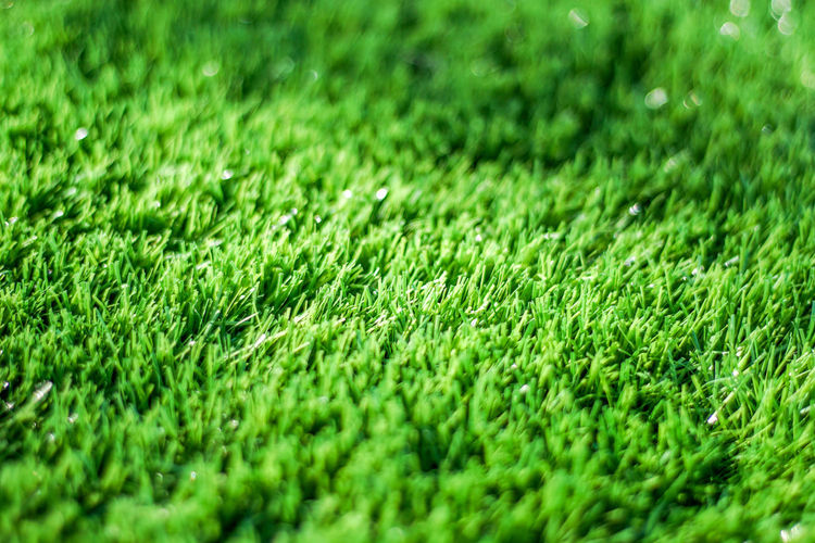 Backgrounds Beauty In Nature Close-up Day Field Full Frame Grass Green Green - Golf Course Green Color Lawn Nature No People Outdoors Playing Field Soccer Field