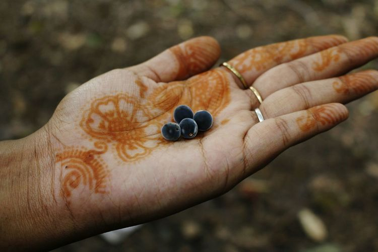 Close-up of berry fruits on woman hand with henna tattoo