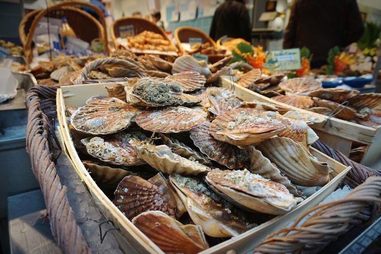 Oysters in a french market