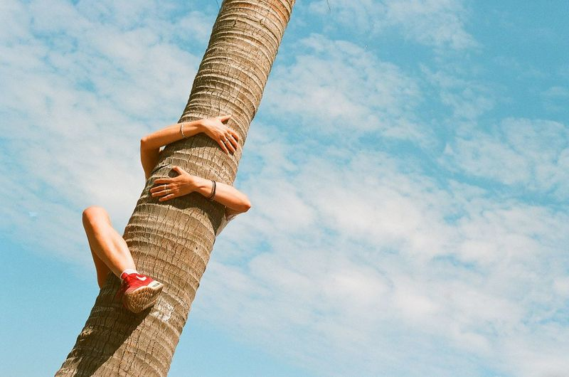 Low angle view of woman climbing on tree