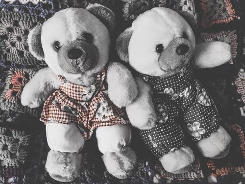 My teddy bears 🎈 IPhoneography Teddy Bear Toy Toy Photography Childhood Childhood Memories Iphonephotography yIphone6s sToys sMytoys sTeddybear rPhotographic Memory Love