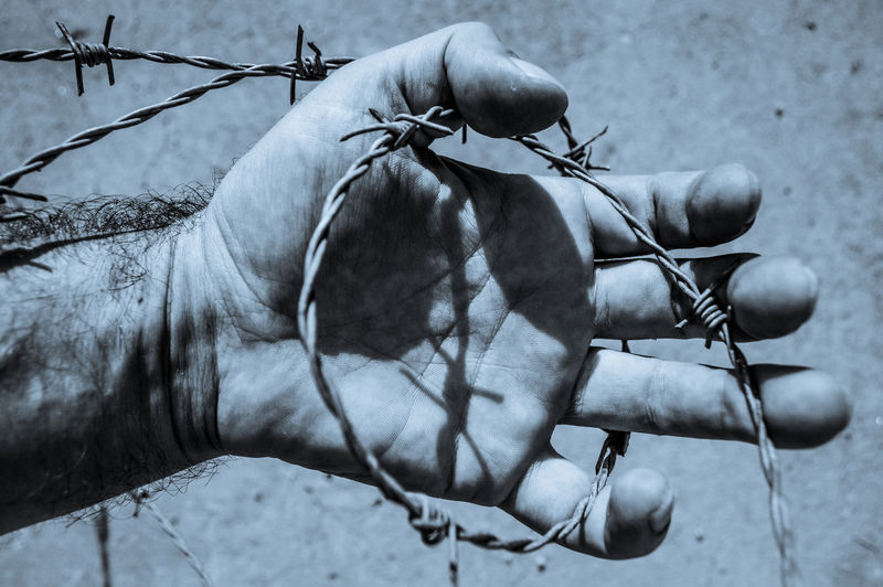 Close-up of hand holding wire fence