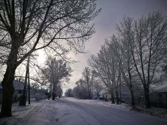 The Way Forward Outdoors Winter Snow Tree Cold Temperature Nature Road Sky Frozen No People Beauty In Nature Weather Day