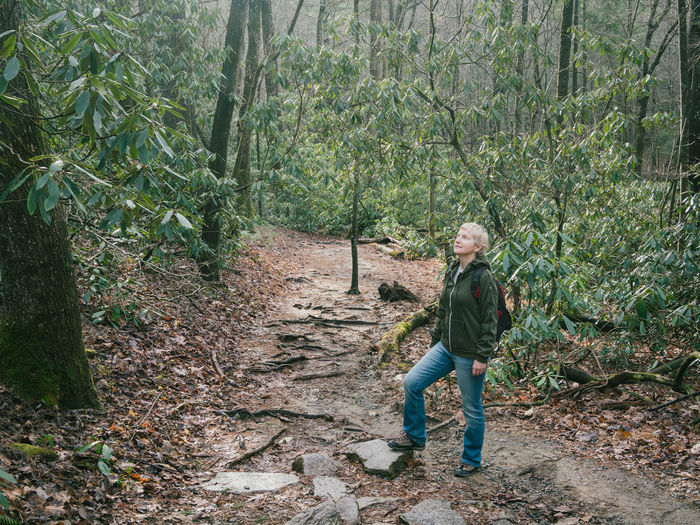 Full length of woman standing amidst trees in forest