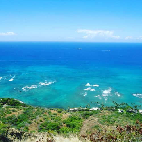 hawaii Sea Beach Turquoise Colored Horizon Over Water Island Water Scenics Nature Beauty In Nature Vacations Blue