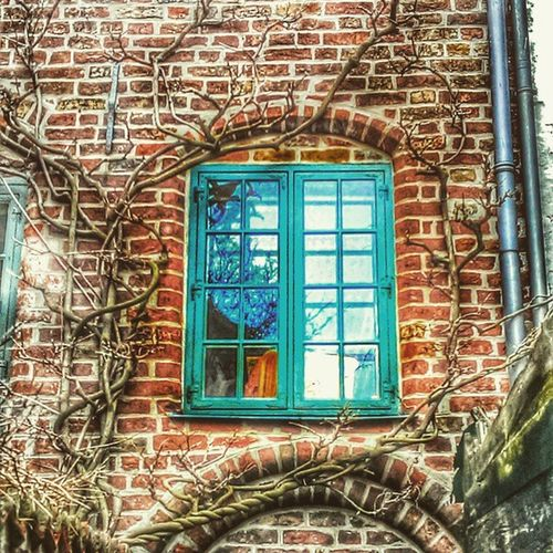 Likeadream Lübeck Fantastic Colors Typical Beautiful House Blue Window Great