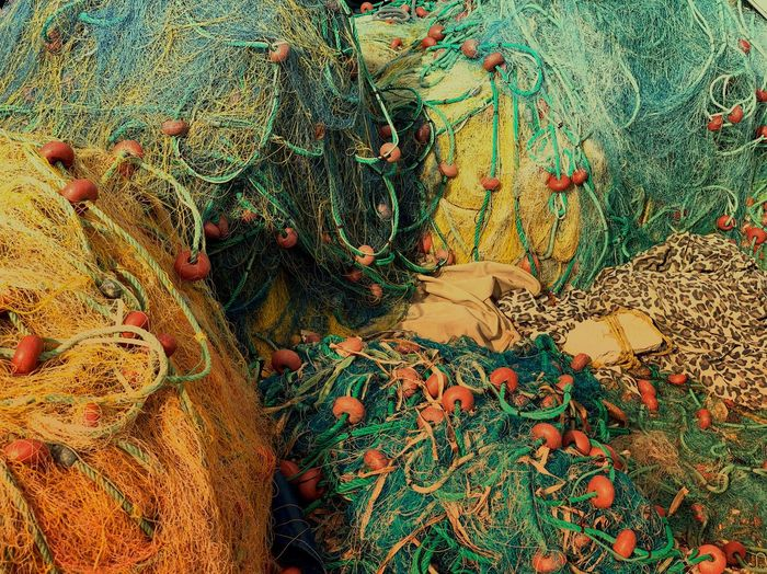 Full Frame Backgrounds No People Pattern High Angle View Day Close-up Multi Colored Textile Fishing Net Nature Outdoors Beauty In Nature Floral Pattern Textured  Water Celebration Plant Design