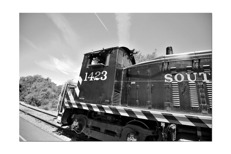 Train's Crew 4 Niles Canyon Railway Niles, Ca. Engineer Diesel Locomotive Southern Pacific Pacific Locomotive Association Train Tracks Bnw_transportation Bnw_friday_eyeemchallenge Railroad Railroad Heritage Living History Museum Public Education California Railroad Heritage Passenger Train Train Photography Railroad Photography Monochrome Monochrome_Photography Black & White Black & White Photography Black And White Black And White Collection  Landscape Sky And Clouds Tribute Train Railroad History Countryside