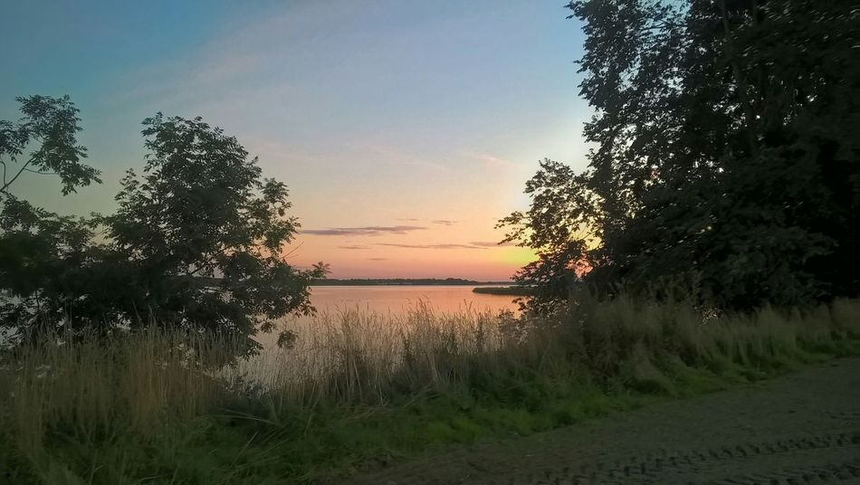 Sun goes down Lumia640 Lumiagraphy Sorcerer86 Nofilter Smartphoneography Schlei