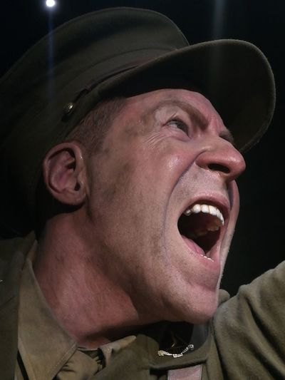 Arts Culture And Entertainment Adults OnlyOne Person Headshot One Man Only Adult Not A Real Person Mouth Open ANZAC Sculpture Giant Te Papa Museum Up Close Life Like