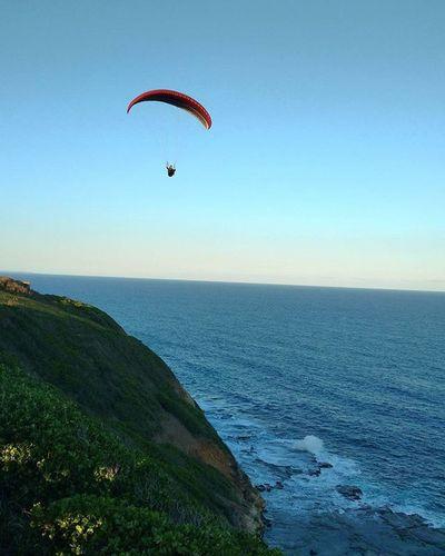 Just plain crazy haha Paraglider Ocean Coast Newcastle Newy Igersnewy Newcastlelifestyle Newcastlelife Mynewcastle Newcastlensw Newyisok Motoxplay Motorolamotoxplay Motorola Smartphone