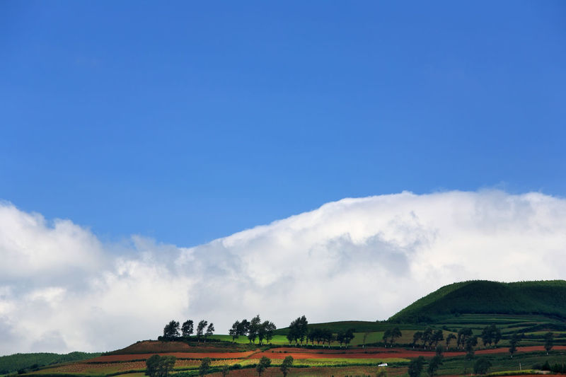 Beautiful country on red dirt with mountains at Kunming in Yunnan, China Sky Environment Landscape Cloud - Sky Scenics - Nature Nature Beauty In Nature Tranquil Scene Plant Tranquility Land Day No People Tree Copy Space Outdoors Non-urban Scene Field Architecture Rural Scene China