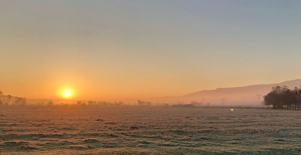Winter is Coming Winteriscoming Endoffall Coldsnap Cold -1  Izmit Nature Sunrise Beforewinter Morning