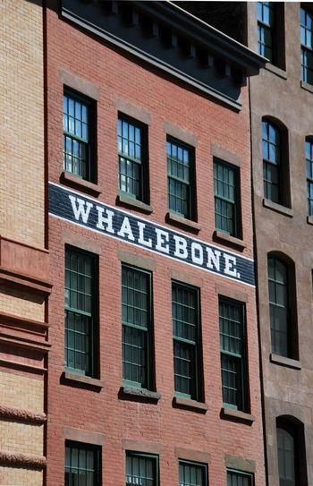 Manhattan Whalebone