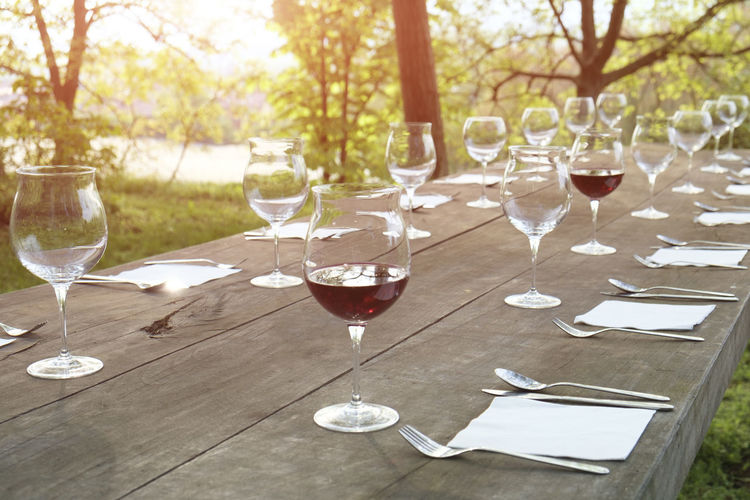 wineglasses on wooden table Absence Alcohol Crockery Day Drink Drinking Glass Focus On Foreground Food Food And Drink Glass Glass - Material Household Equipment Nature No People Outdoors Plant Red Wine Refreshment Setting Table Transparent Tree Wine Wineglass