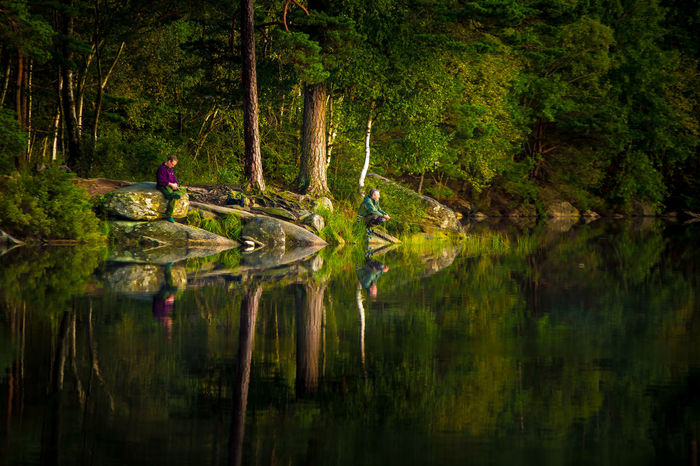 Calm Lake Canon 6D Delsj Fisherman Fishing In Lake Goteborg Gothenburg Reflecting In Water Reflections In Water Still Lake Swedish Lake Swedish Summer Tranquility Trees Reflection