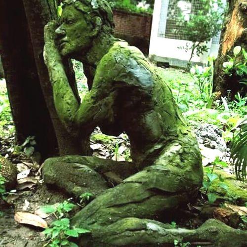 Greenlife Alauddin The Following Dhaka Art